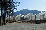 上の原農園
